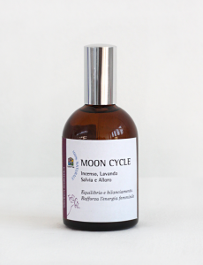 Moon Cycle - Libro