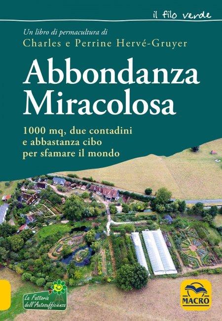 Abbondanza Miracolosa USATO - Libro