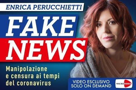 Fake News - On Demand