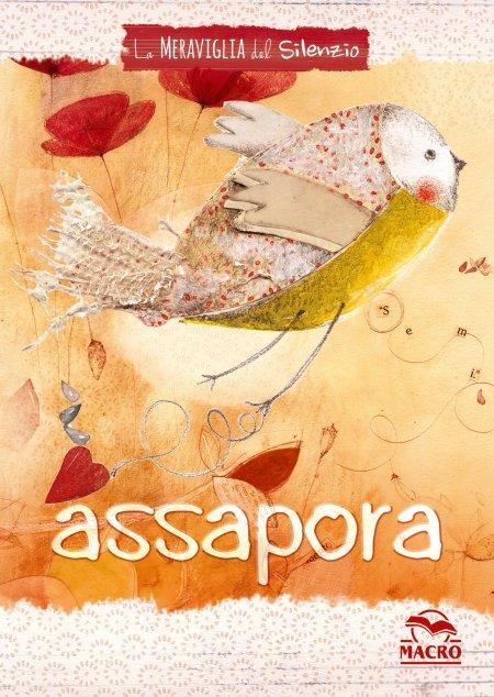 La Meraviglia del Silenzio - quaderno ASSAPORA - Cartolibro
