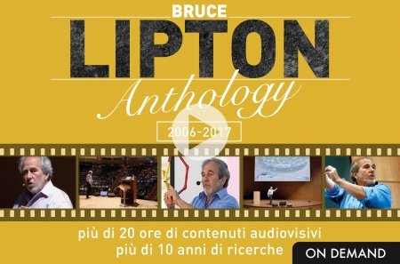 Lipton Anthology