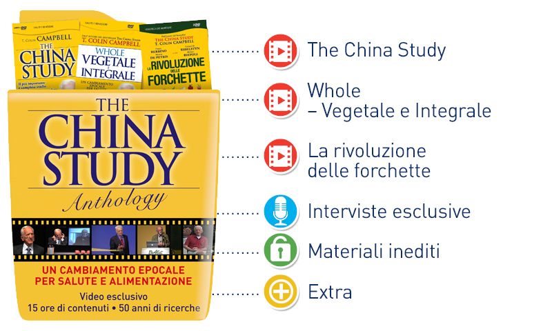 China Study Anthology contenuti