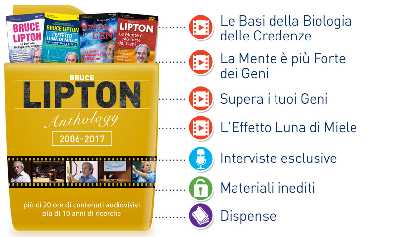 Cosa contiene Lipton Anthology