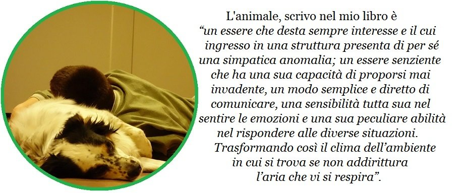 pet therapy l'animale